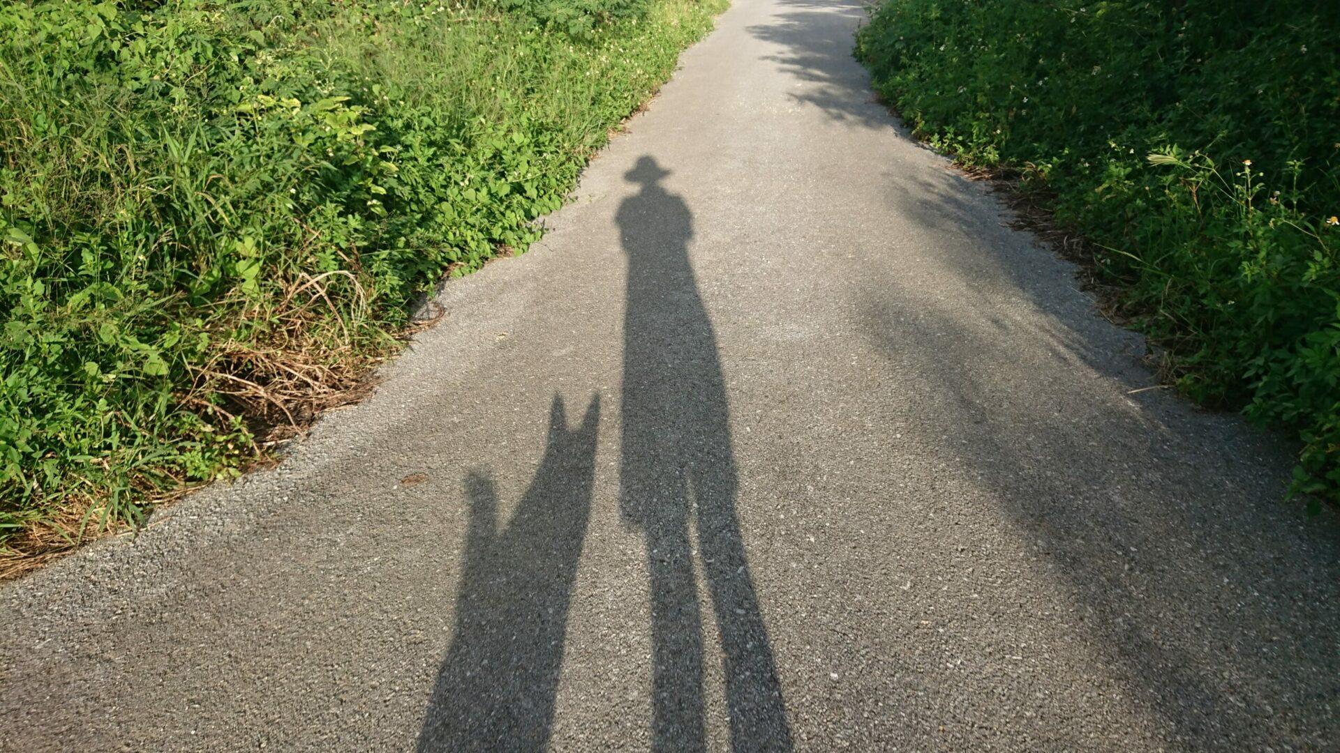 『まる子と私』